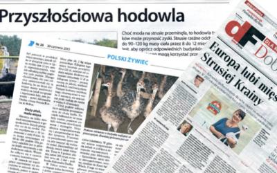 Jak Polska stała się liderem w hodowli strusi